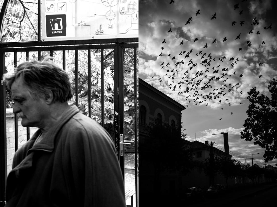 2017. 10. 07. BBB. séta (Grand Café Várkert & Csillag börtön) Fotó: Pál Anna Viktória