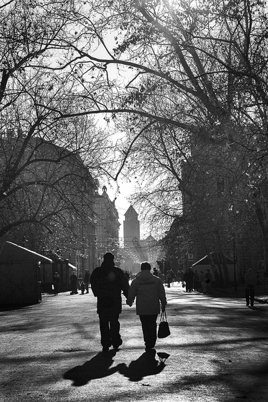 Hideg téli fénye, hosszú árnyékai előcsalják rejtekhelyükről a város apró csodáit, amelyek a nyári forróság párájában rejtőztek. A lombjaikat vesztett fák megadóan térnek ki a napsugarak útjából.