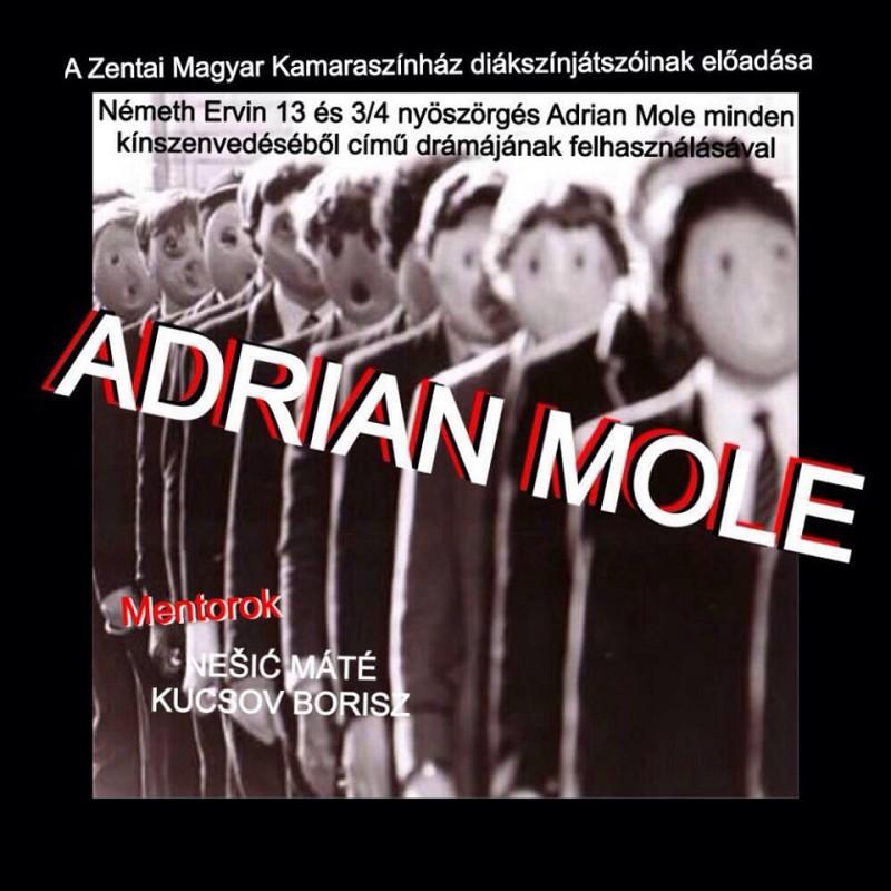 adrian_mole_plakat