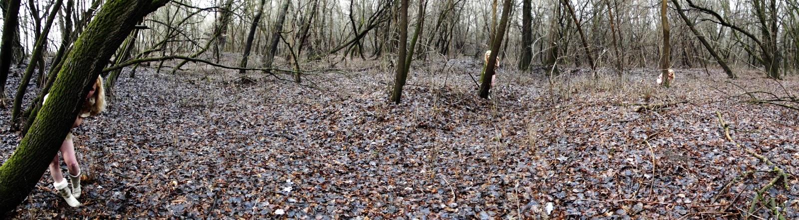 Játék az erdőben I.