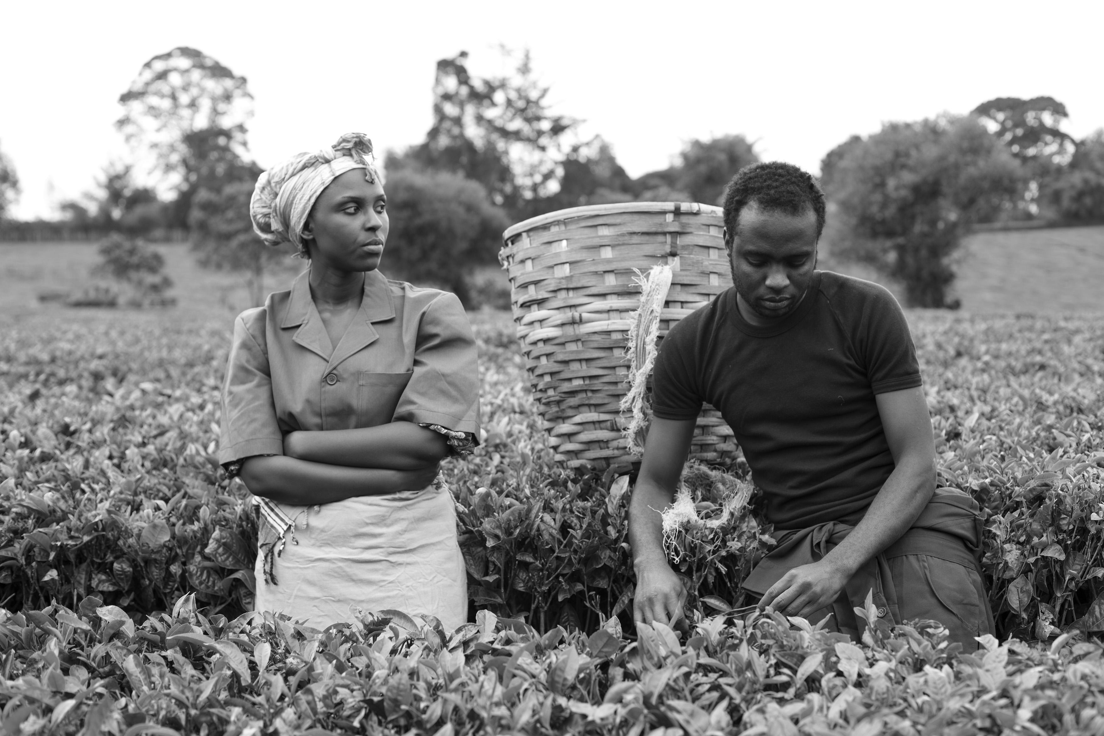 A kenyai színészek veszélyeztették szabadságukat pusztán azzal, hogy szerepet vállaltak a Stories of Our Livesban